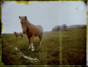 Icelandic horse and an abandoned farm in Iceland Fine art Polaroid photography by Guðmundur Óli Pálmason kuggur.com