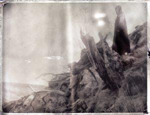 a dark figure of death by a dead broken tree - corona art - fine art polaroid photography by Guðmundur Óli Pálmason - kuggur.com